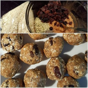 breakfast-balls-with-cricket-powder
