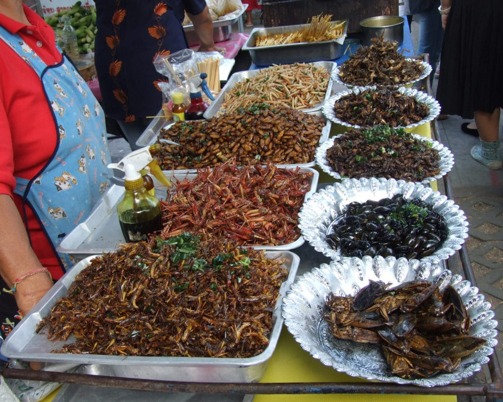 Eating Insects in Thailand