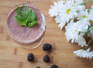 Cricket smoothie recipe