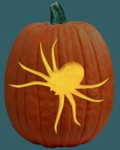 big-spider-pumpkin-carving