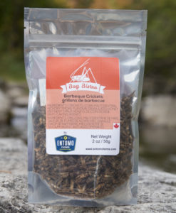 BBQ Crickets- Medium Bag