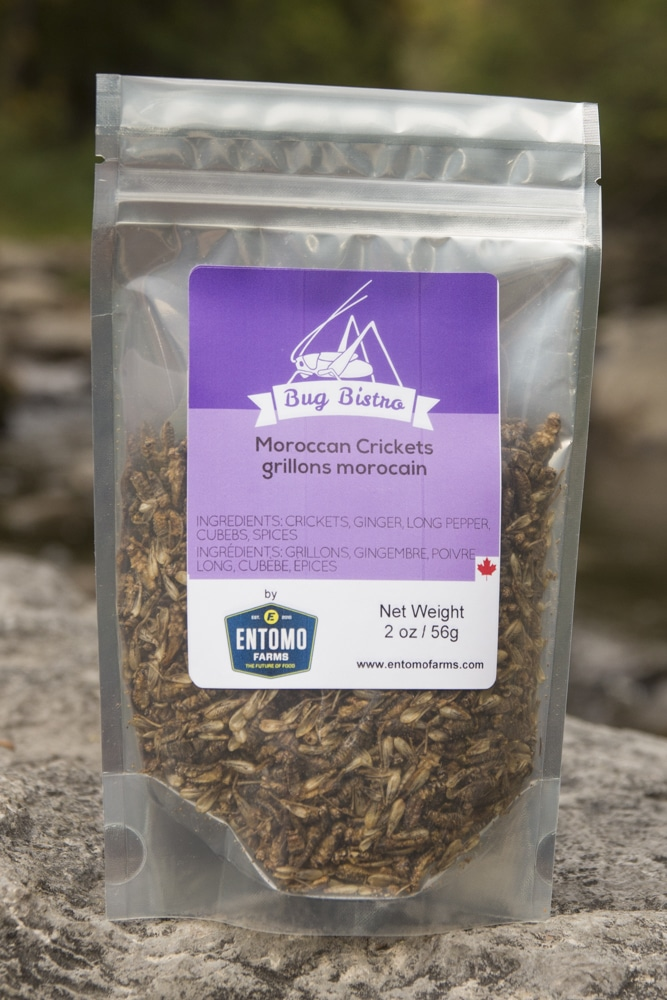 Canadian Grocer: Insects: The Newest Protein