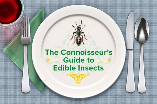 Eat Bugs with Western Exterminator