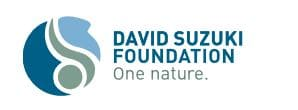 Entomophagy article david suzuki foundation