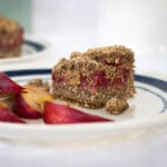 Healthy and delicious berry breakfast bars baked with cricket powder