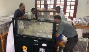Madagascar Passion project entomophagy