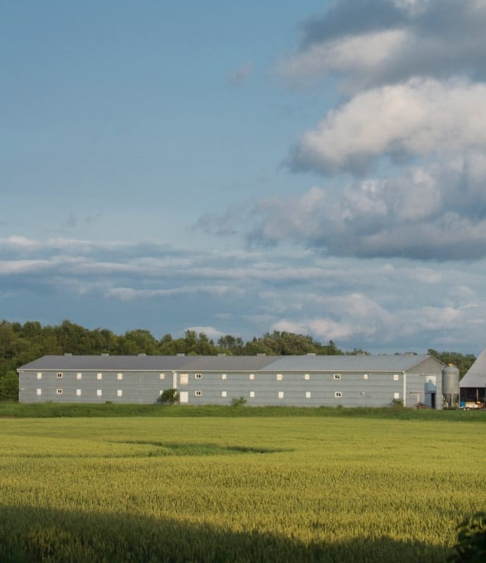 Photo of a farm building set in a field.