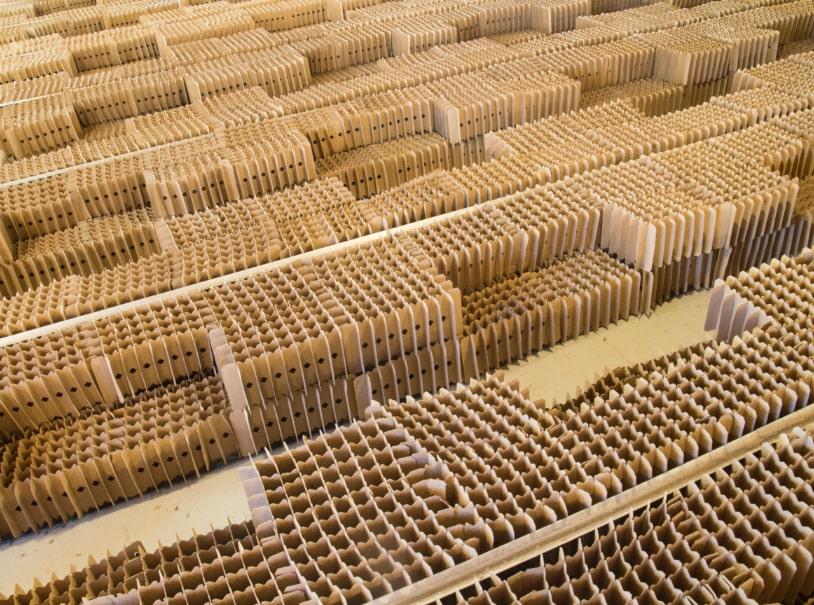 Photo of cardboard honeycombs used to farm crickets