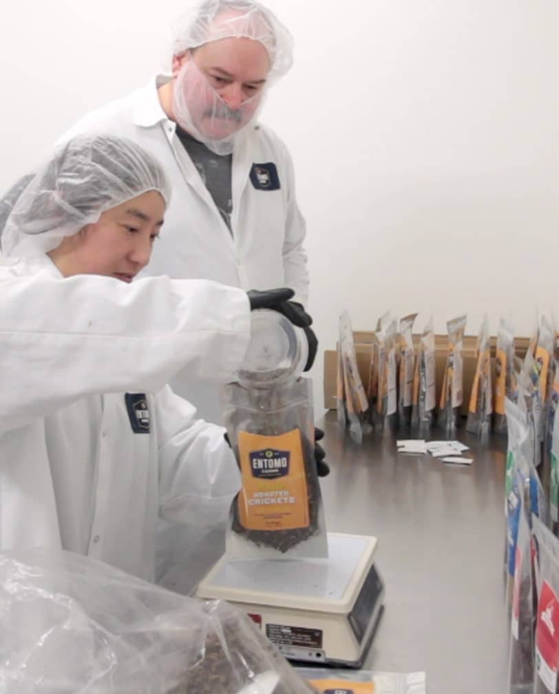 Photo of two male Entomo Farms team members, filling and weighing bags of roasted crickets.